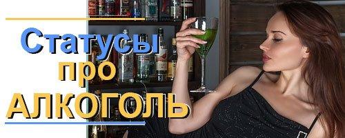 Статусы про алкоголь (2)